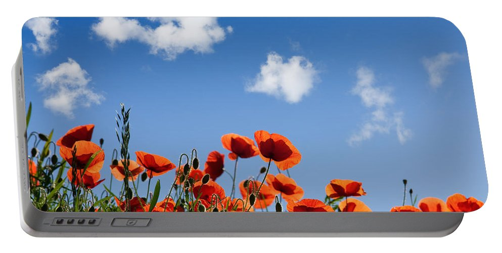 Poppy Portable Battery Charger featuring the photograph Poppy Flowers 05 by Nailia Schwarz