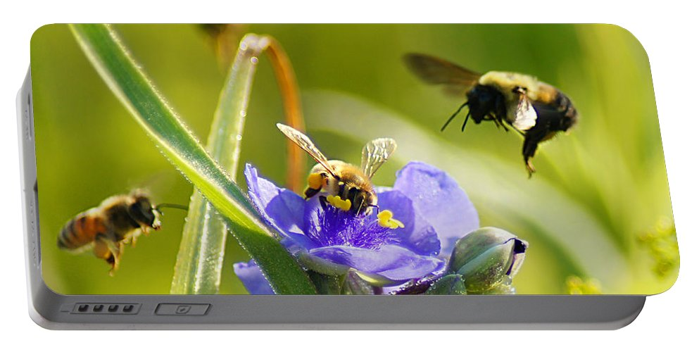 Bee Portable Battery Charger featuring the photograph Popular Spot Cropped by Bill Pevlor