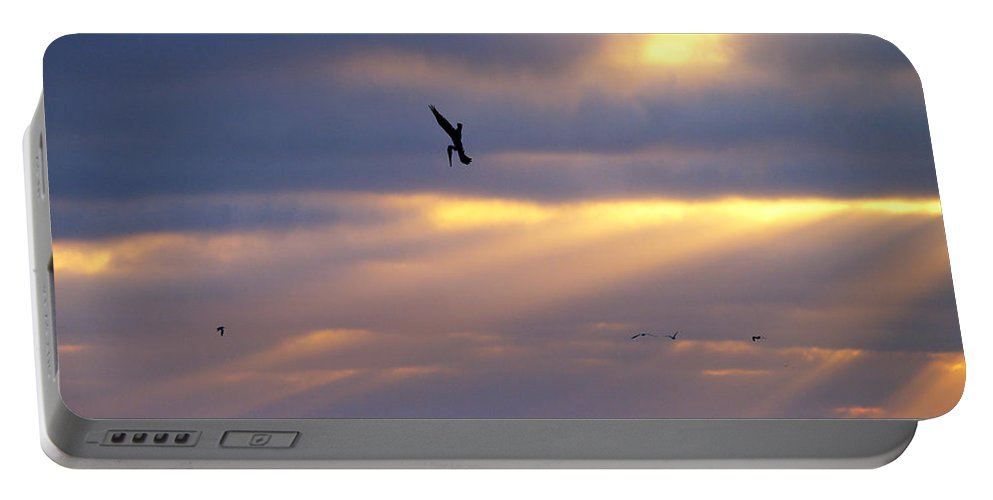 Sunset Portable Battery Charger featuring the photograph Predator Drone In The Minds Of Fish by Joe Schofield