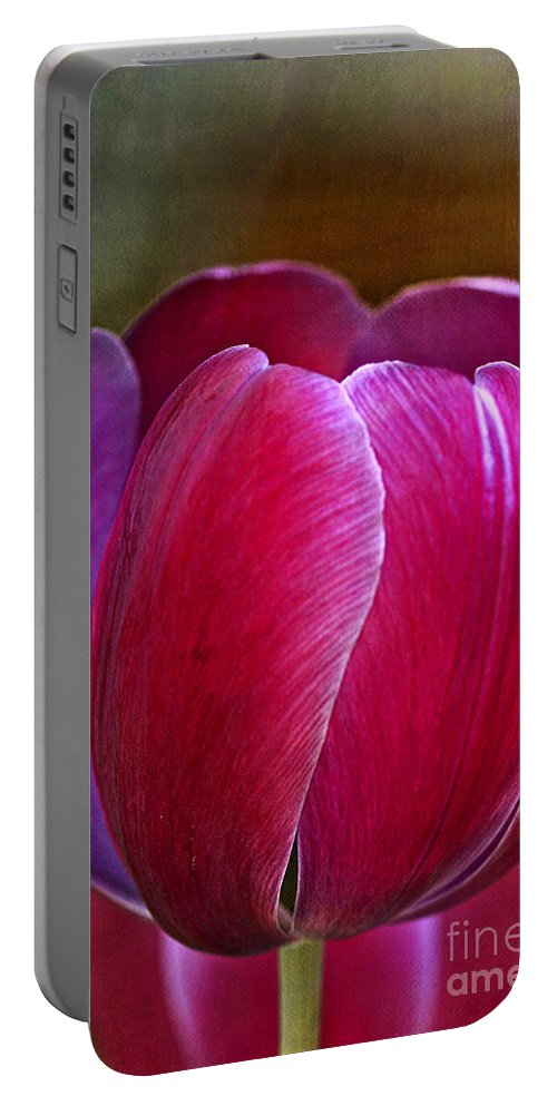 Tulip Portable Battery Charger featuring the photograph Pretty In Pink by Deborah Benoit