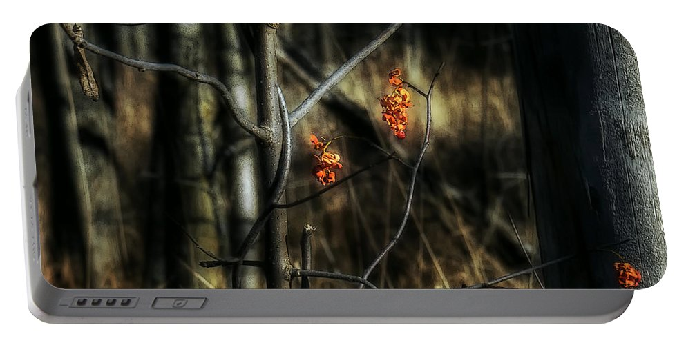 Acrylic Prints Portable Battery Charger featuring the photograph Pretty Little Red Things by John Herzog