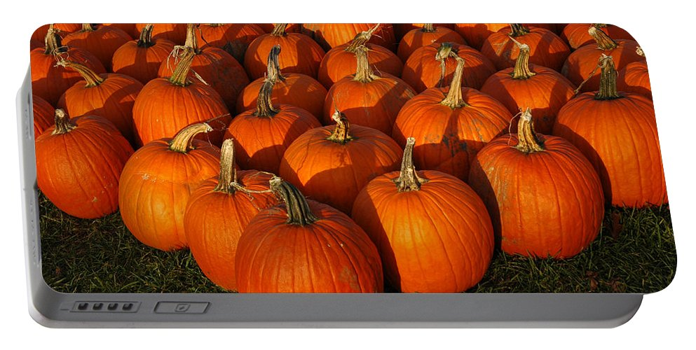 Food And Beverage Portable Battery Charger featuring the photograph Pumpkin Pie Anyone by LeeAnn McLaneGoetz McLaneGoetzStudioLLCcom