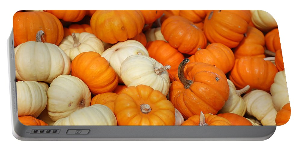 Autumn Portable Battery Charger featuring the photograph Pumpkin Squash by Richard Ortolano