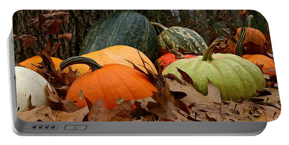 Outdoors Portable Battery Charger featuring the photograph Pumpkins And More Pumpkins by Susan Herber
