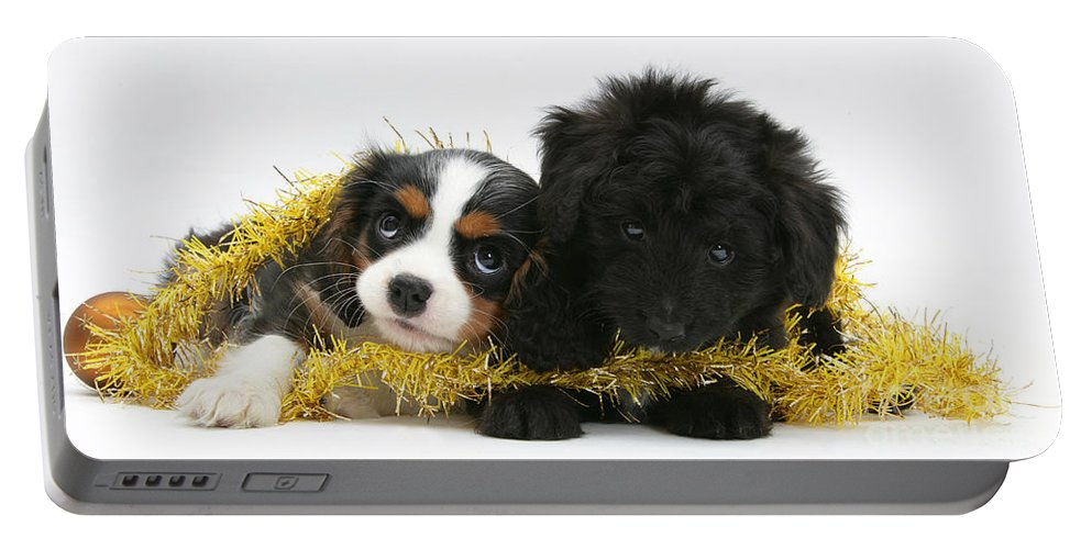 Animal Portable Battery Charger featuring the photograph Puppies With Tinsel by Mark Taylor