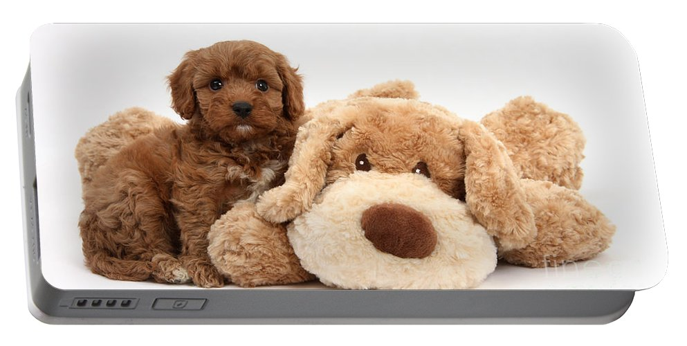 Animal Portable Battery Charger featuring the photograph Puppy by Mark Taylor