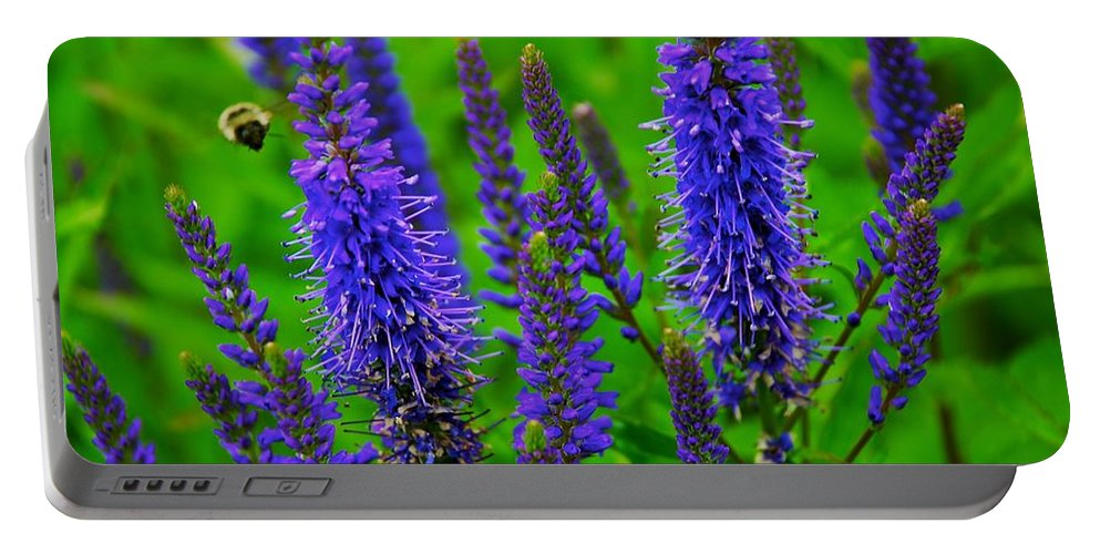 Flowers Portable Battery Charger featuring the photograph Purple Blue Yellow Green by Eric Tressler