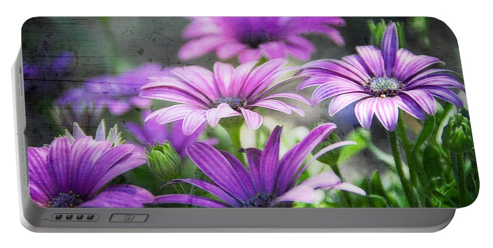 Purple Daisies Portable Battery Charger featuring the photograph Purple Daisies by Saija Lehtonen