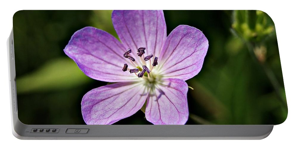 Purple Portable Battery Charger featuring the photograph Purple Flower 1 by Joe Faherty