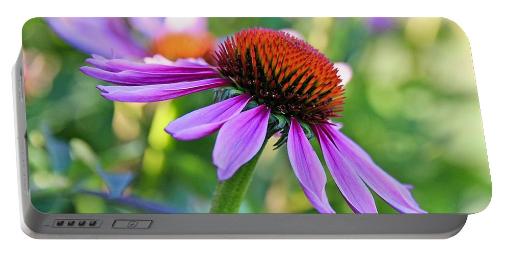 Coneflower Portable Battery Charger featuring the photograph Purple Pedals by Athena Mckinzie