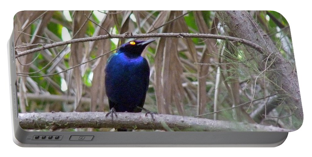 Starling Portable Battery Charger featuring the photograph Purple Starling by Tony Murtagh