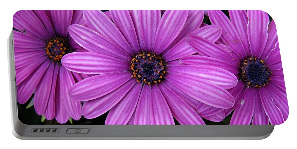 Flower Portable Battery Charger featuring the photograph Purple Trio by Ashley M Conger