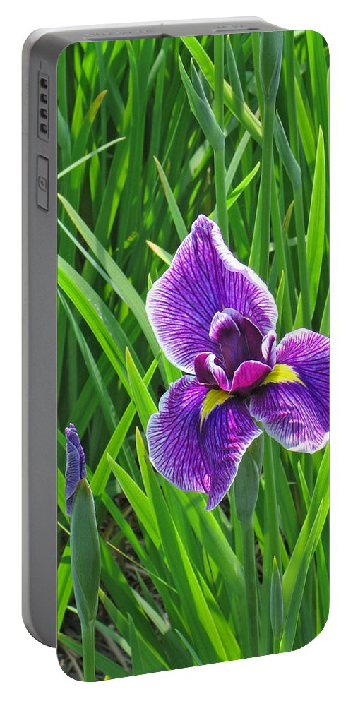 Purple Water Iris Portable Battery Charger featuring the photograph Purple Water Iris by Greg Matchick