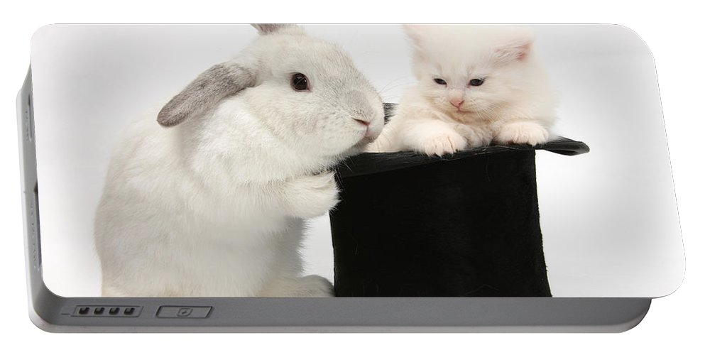 Animal Portable Battery Charger featuring the photograph Rabbit And Kitten In Top Hat by Mark Taylor