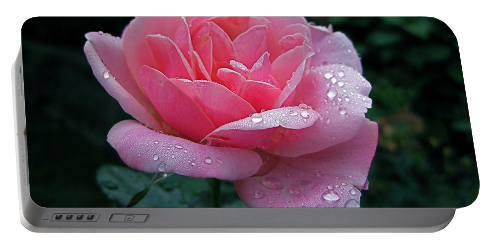 Rose Portable Battery Charger featuring the photograph Rain Sprinkled Rose by Byron Varvarigos