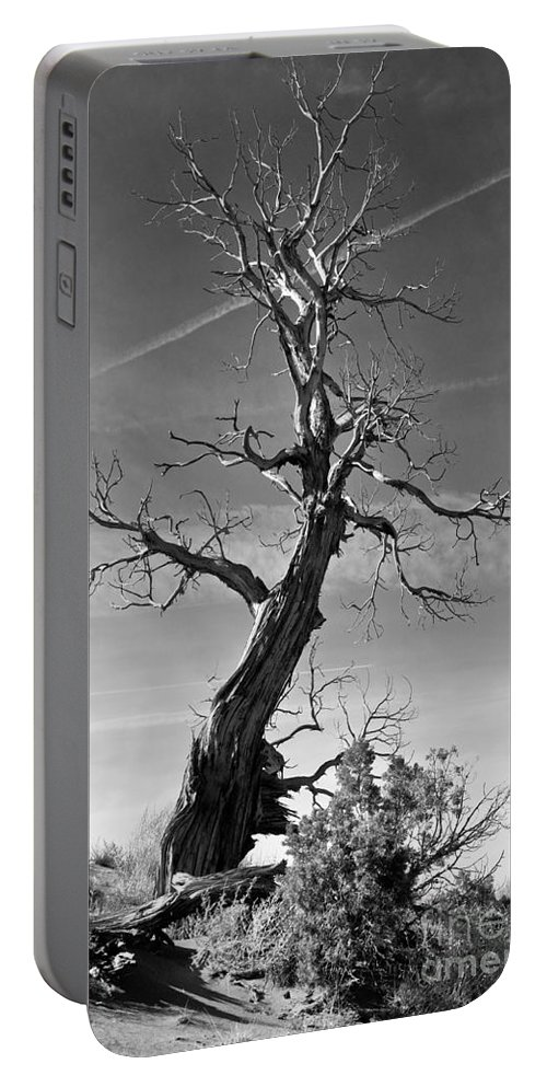 Monument Valley Portable Battery Charger featuring the photograph Reaching For The Sky by Jim Chamberlain