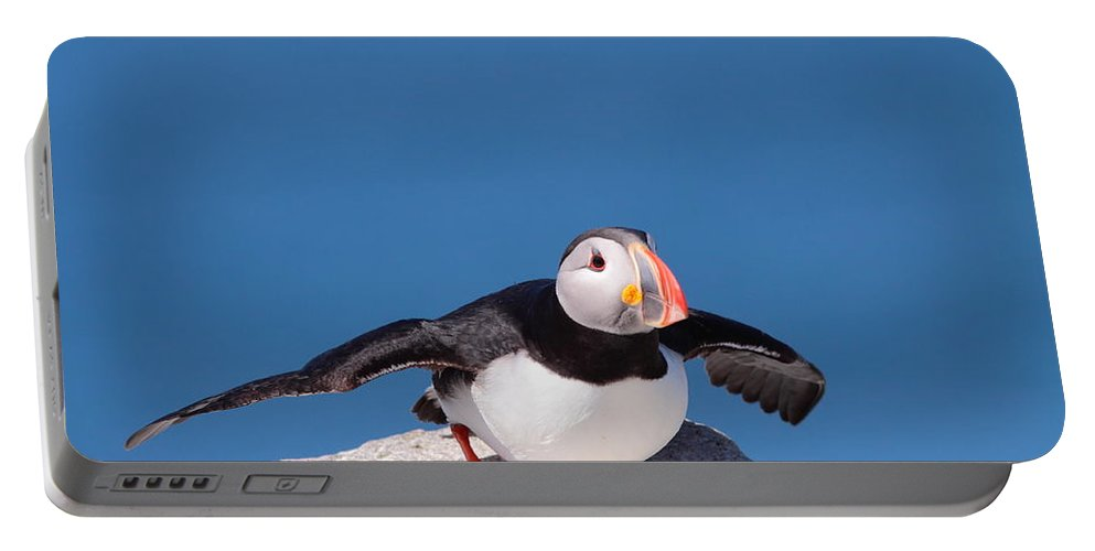 Puffin Portable Battery Charger featuring the photograph Ready For Takeoff by Bruce J Robinson