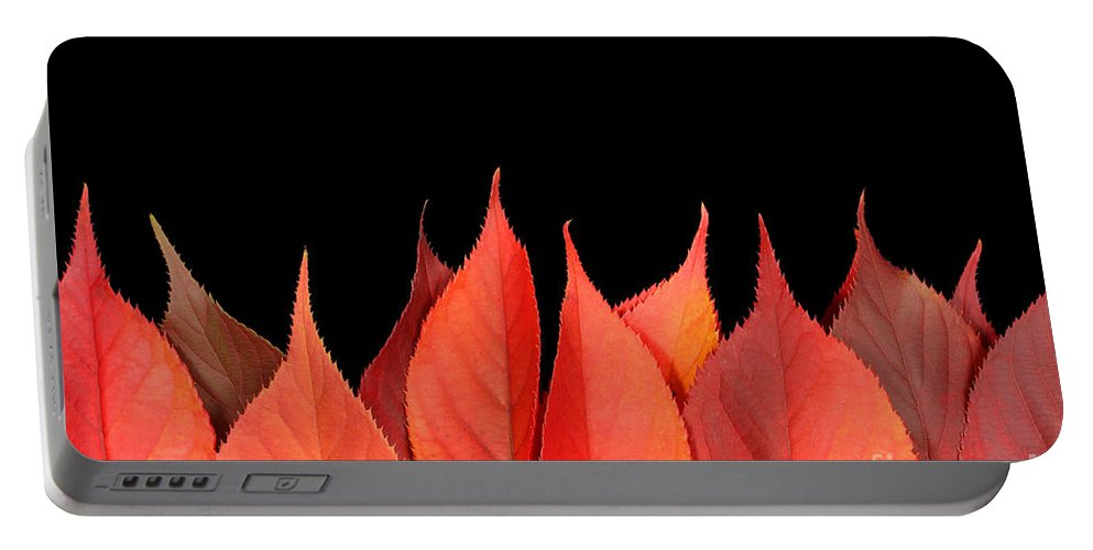 Flames Portable Battery Charger featuring the photograph Red Autumn Leaves On Edge by Simon Bratt Photography LRPS