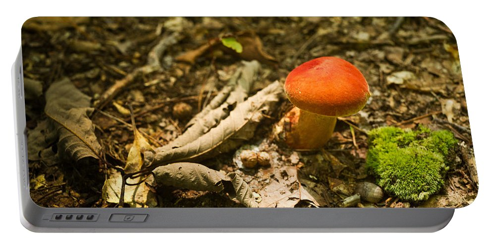 Red Portable Battery Charger featuring the photograph Red Caped Mushroom 1 by Douglas Barnett