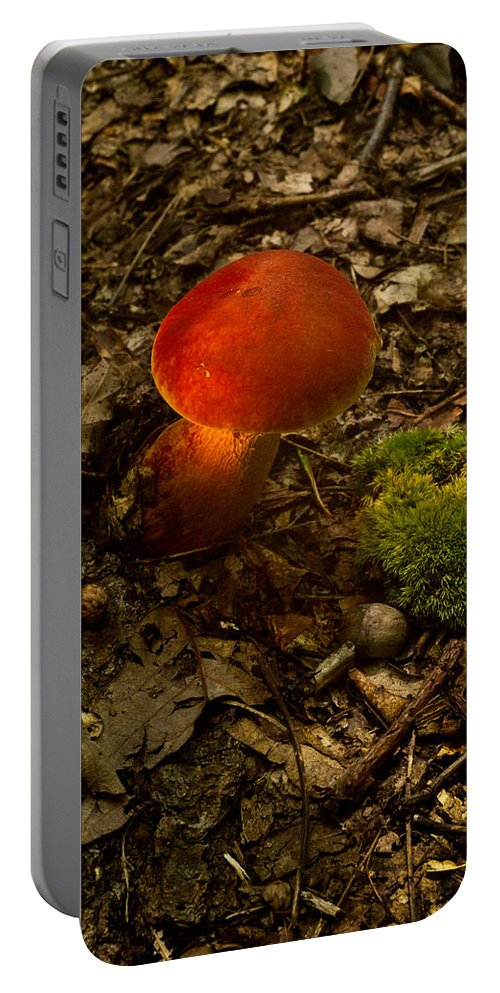 Red Portable Battery Charger featuring the photograph Red Caped Mushroom 4 by Douglas Barnett