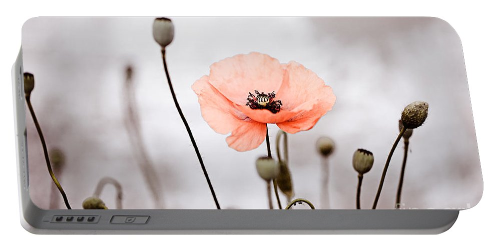 Poppy Portable Battery Charger featuring the photograph Red Corn Poppy Flowers 01 by Nailia Schwarz