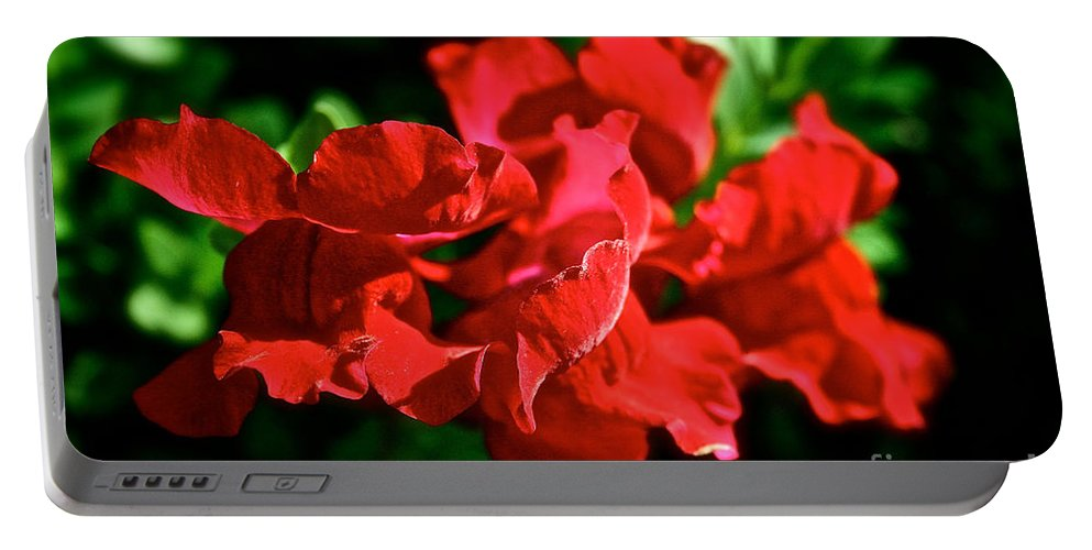 Plant Portable Battery Charger featuring the photograph Red Dragon by Susan Herber