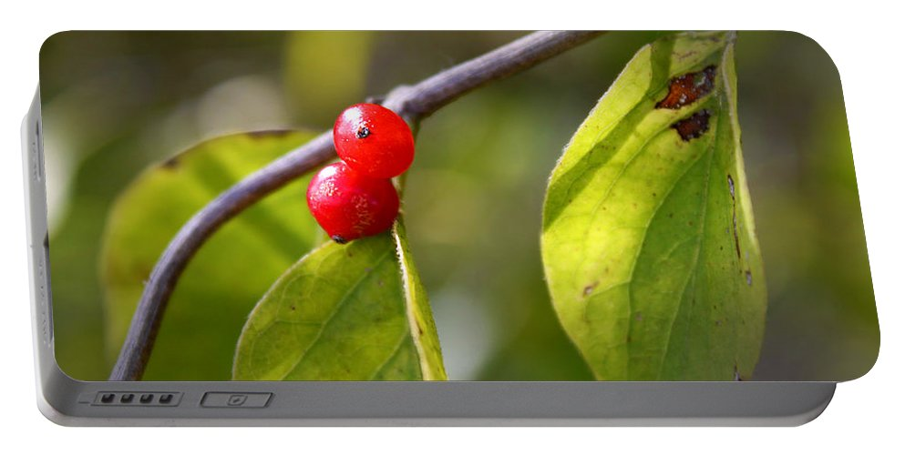 Fruits Portable Battery Charger featuring the photograph Red Fruits by Milena Ilieva