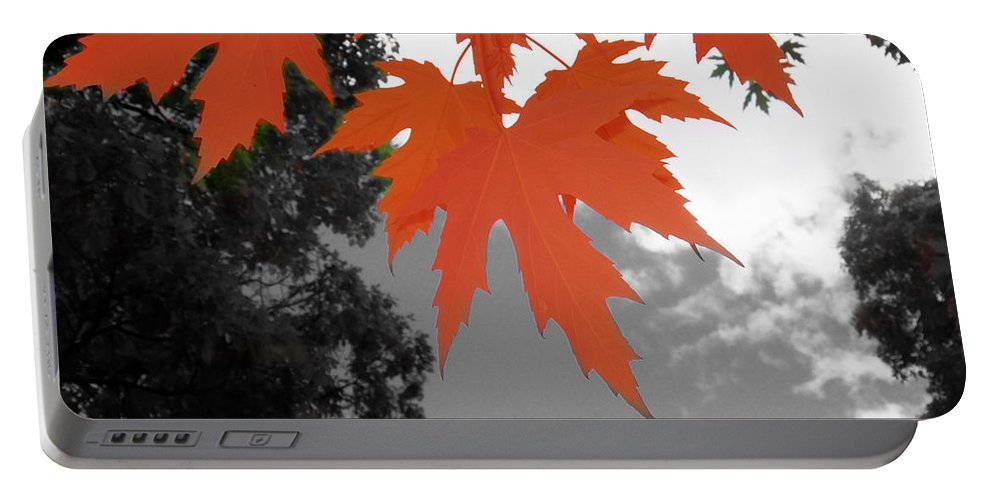 Scene Portable Battery Charger featuring the photograph Red Maple Leaves by Mary Mikawoz