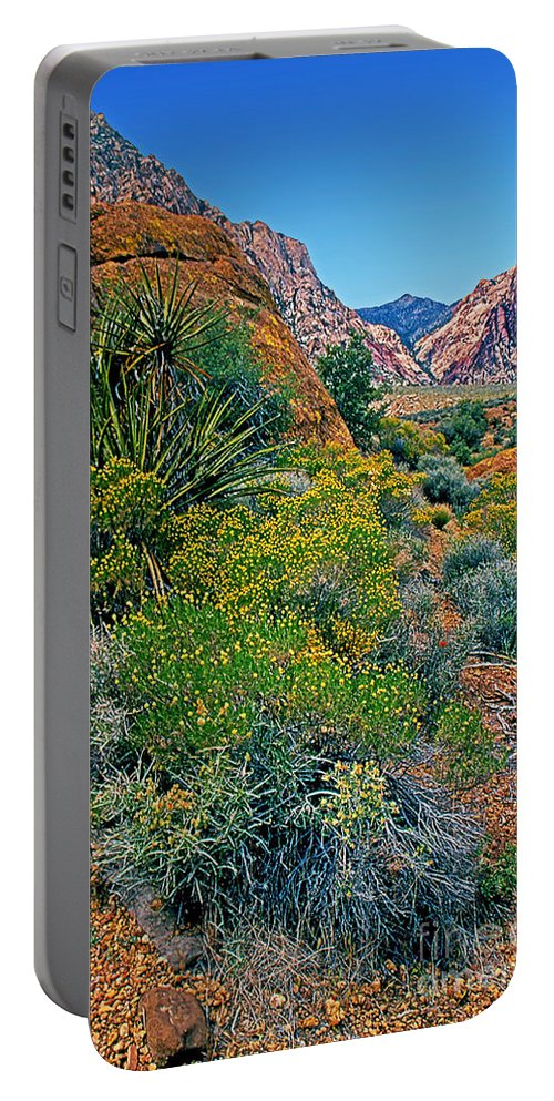 Nevada Portable Battery Charger featuring the photograph Red Rock Park Spring Flowers by Rich Walter