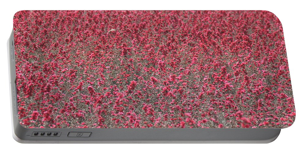 California Portable Battery Charger featuring the photograph Red Sea by Rich Bodane