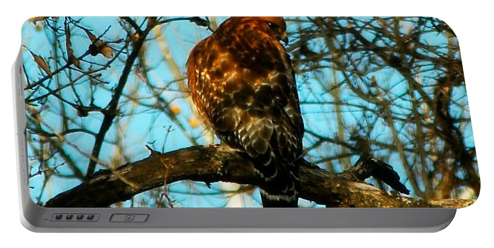 Wildlife Photo Portable Battery Charger featuring the photograph Red Tail Hawk Visitor by Peggy Franz