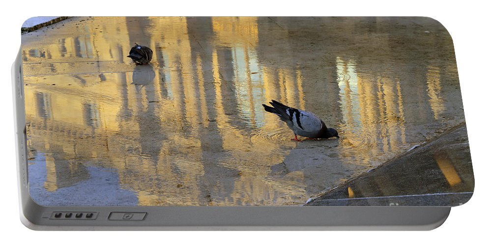 Pigeons Portable Battery Charger featuring the photograph Reflection Of The Louvre In Paris by Louise Heusinkveld