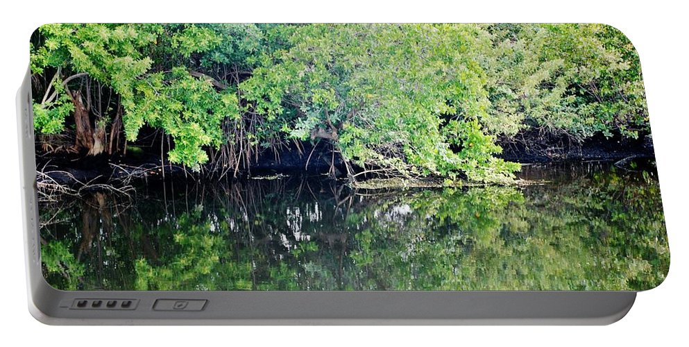 Green Portable Battery Charger featuring the photograph Reflection On The North Fork River by Rob Hans