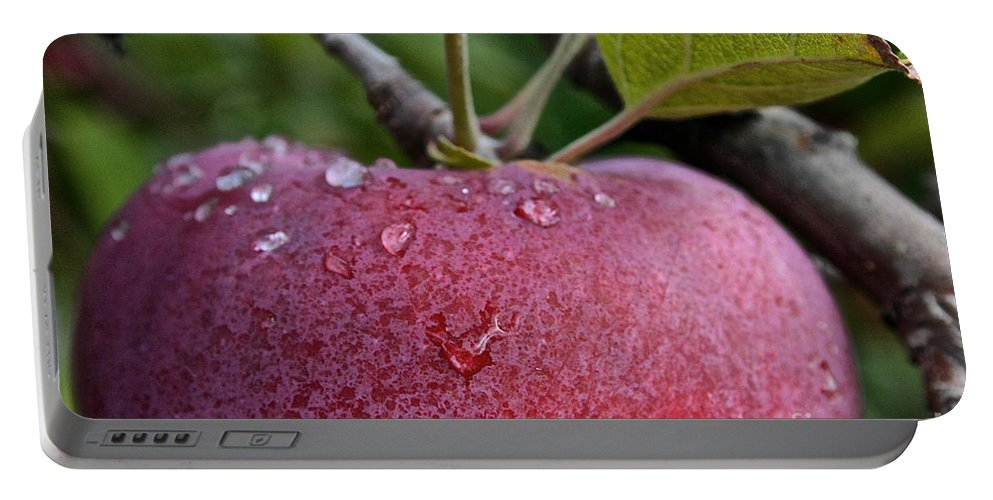 Landscape Portable Battery Charger featuring the photograph Ripe N Ready by Susan Herber