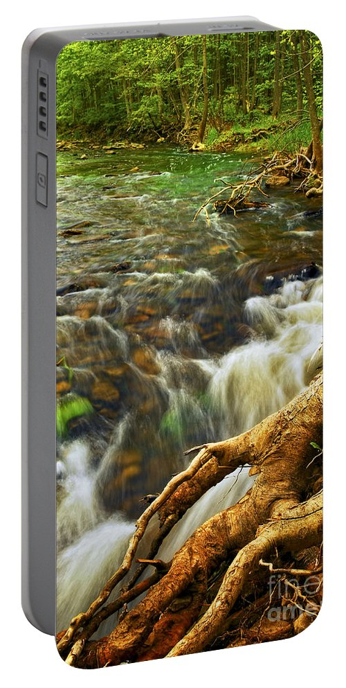 Water Portable Battery Charger featuring the photograph River Rapids by Elena Elisseeva