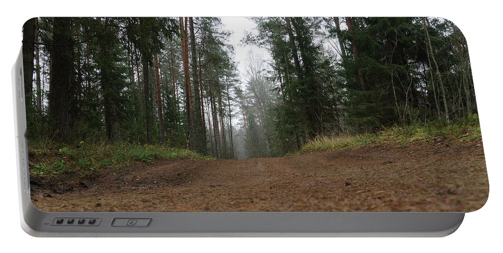 Autumn Portable Battery Charger featuring the photograph Road In A Pine Grove by Michael Goyberg