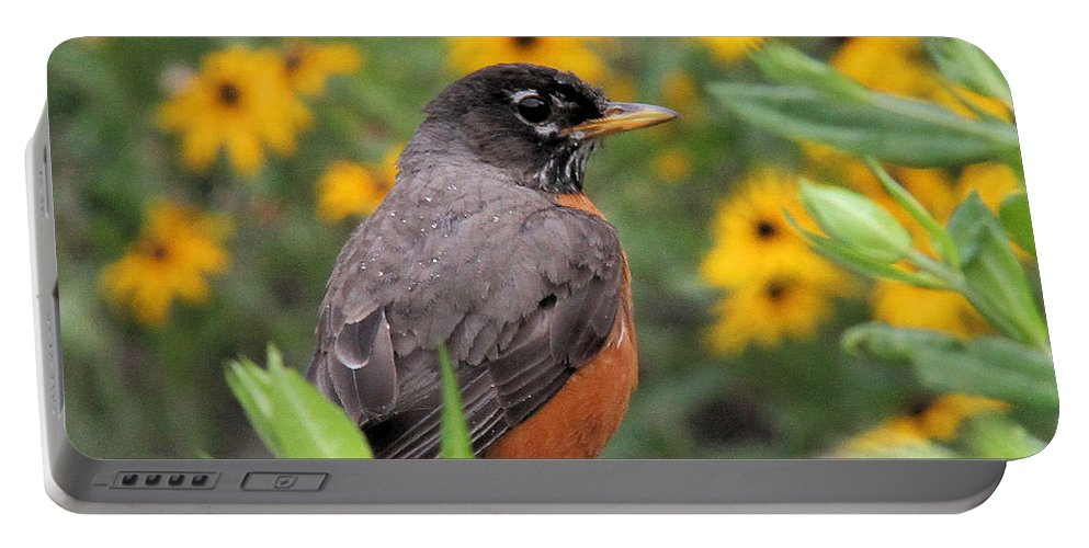 Robin Portable Battery Charger featuring the photograph Robin Among Flowers by Doris Potter