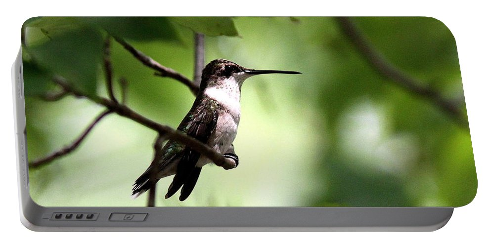 Hummingbird Portable Battery Charger featuring the photograph Ruby-throated Hummingbird - Shade by Travis Truelove