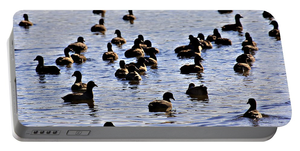 Waterfowl- Lake Wilhelmina Portable Battery Charger featuring the photograph Safety In Numbers by Douglas Barnard