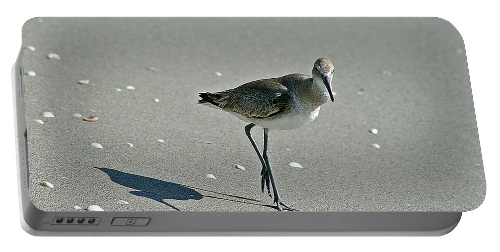 Sandpiper Portable Battery Charger featuring the photograph Sandpiper 3 by Joe Faherty