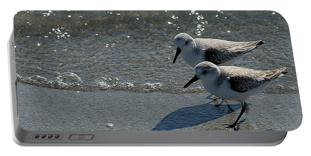 Sandpiper Portable Battery Charger featuring the photograph Sandpiper 5 by Joe Faherty
