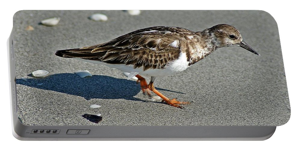 Sandpiper Portable Battery Charger featuring the photograph Sandpiper 9 by Joe Faherty
