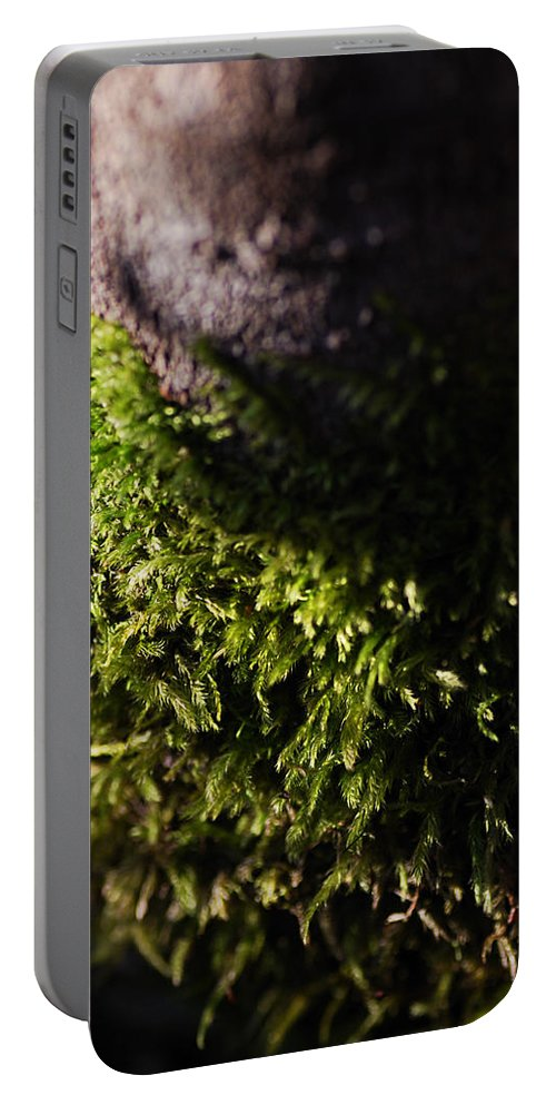 Moss Portable Battery Charger featuring the photograph Scarf Of Green by Susan Capuano
