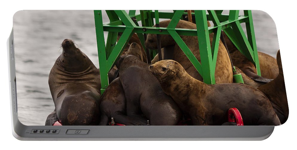 Alaska Portable Battery Charger featuring the photograph Seals Warming Up by Darcy Michaelchuk