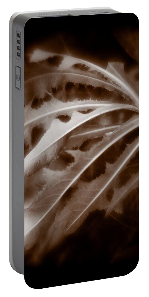 Sepia Portable Battery Charger featuring the photograph Sep 1 by Burney Lieberman