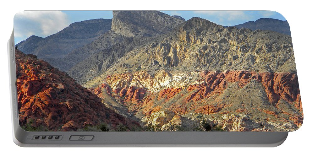 Cactus Portable Battery Charger featuring the photograph Setting Desert Sun by Frank Wilson