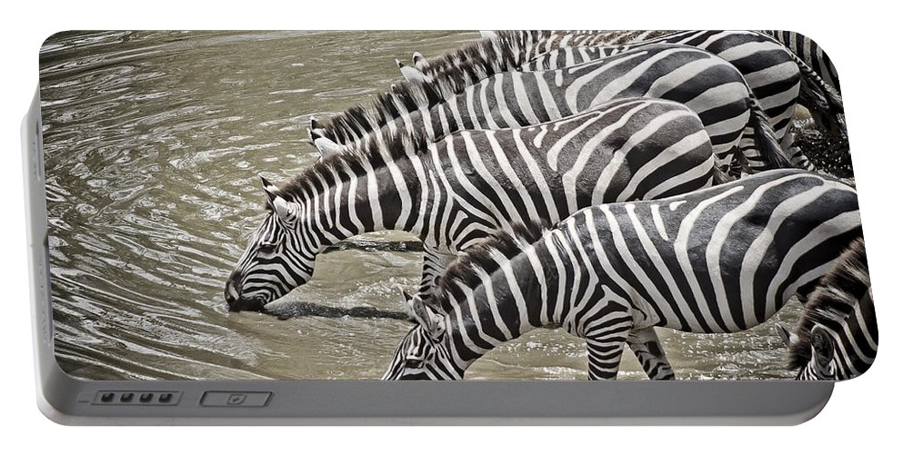 Africa Portable Battery Charger featuring the photograph Several Thirsty Zebra by Darcy Michaelchuk