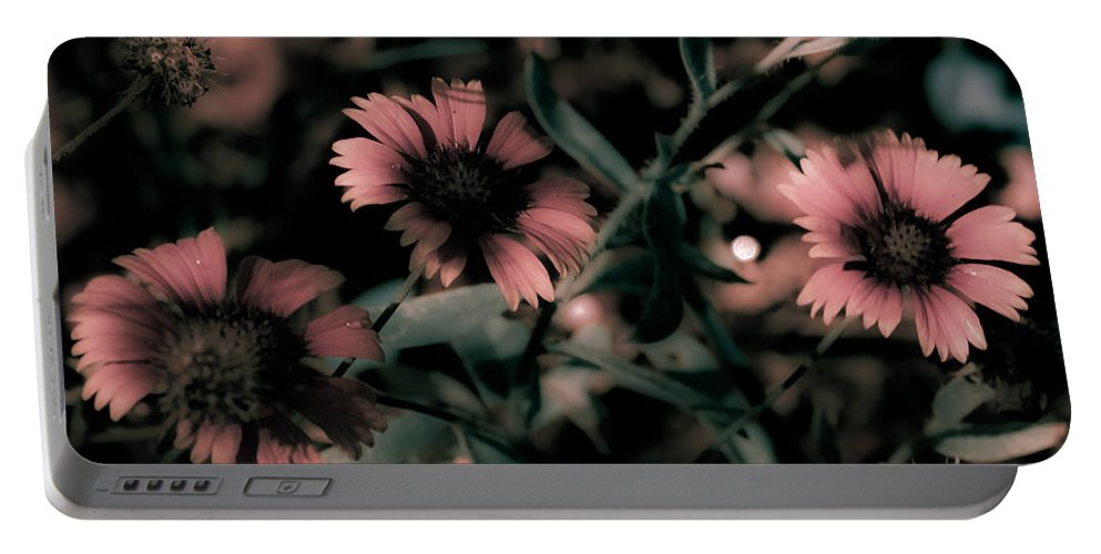 Wildflowers Portable Battery Charger featuring the photograph Shaded In The Evening by DigiArt Diaries by Vicky B Fuller