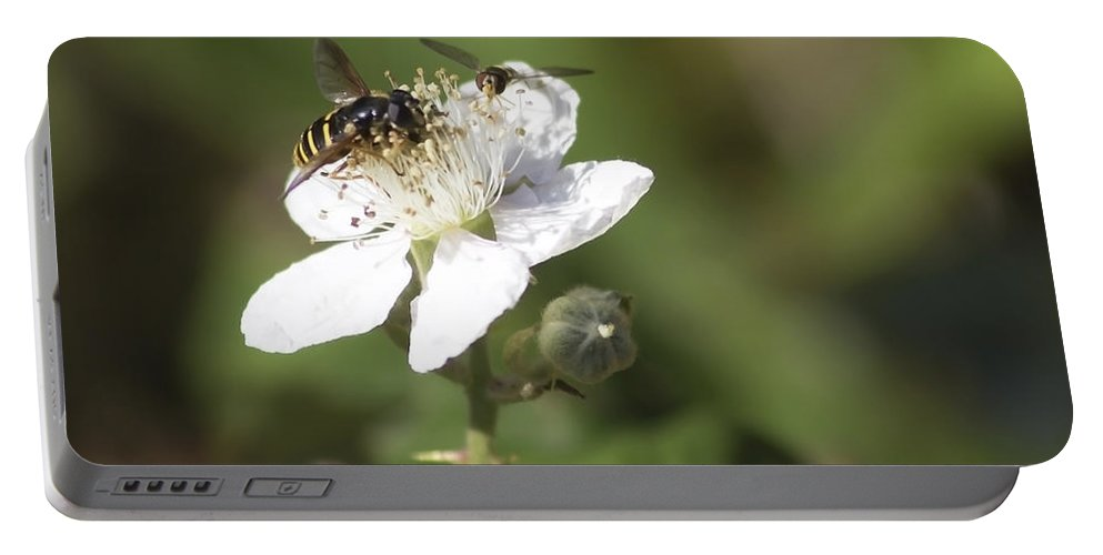 Nature Portable Battery Charger featuring the photograph Sharing A Bud by Belinda Greb