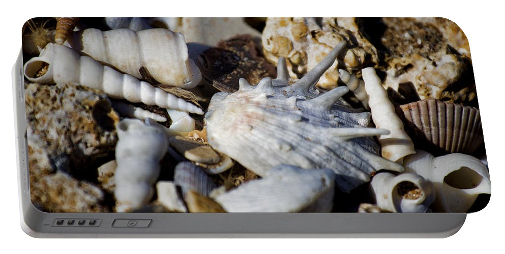 Shells Portable Battery Charger featuring the photograph Shelly Beach V2 by Douglas Barnard